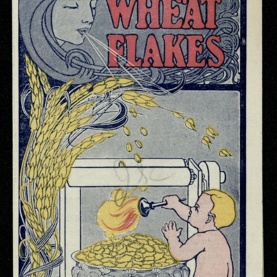 Toasted Wheat Flakes