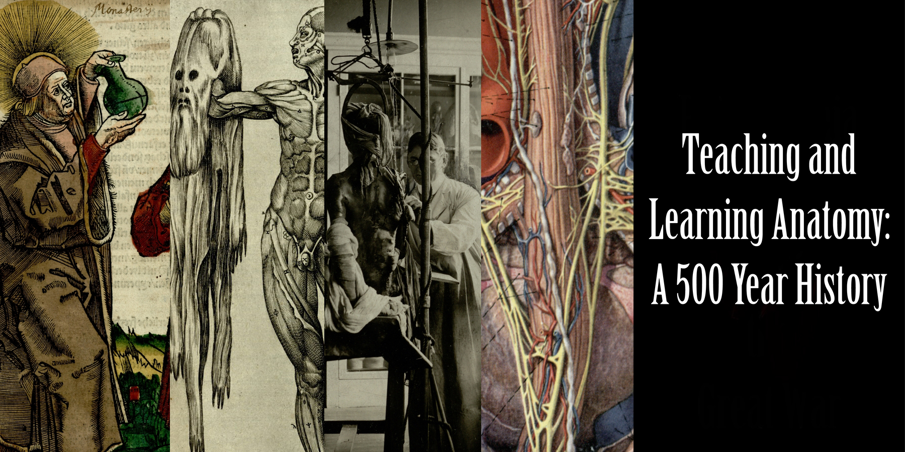 Teaching and Learning Anatomy: A 500 Year History
