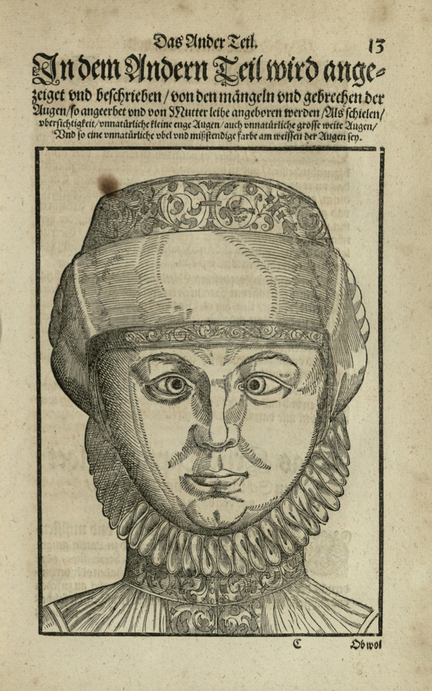 Woodcut from [Ophthalmodouleia], das ist Augendienst [13r]
