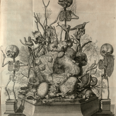 A composition of three fetal skeletons